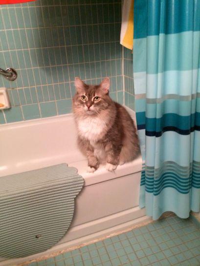 On bathtub