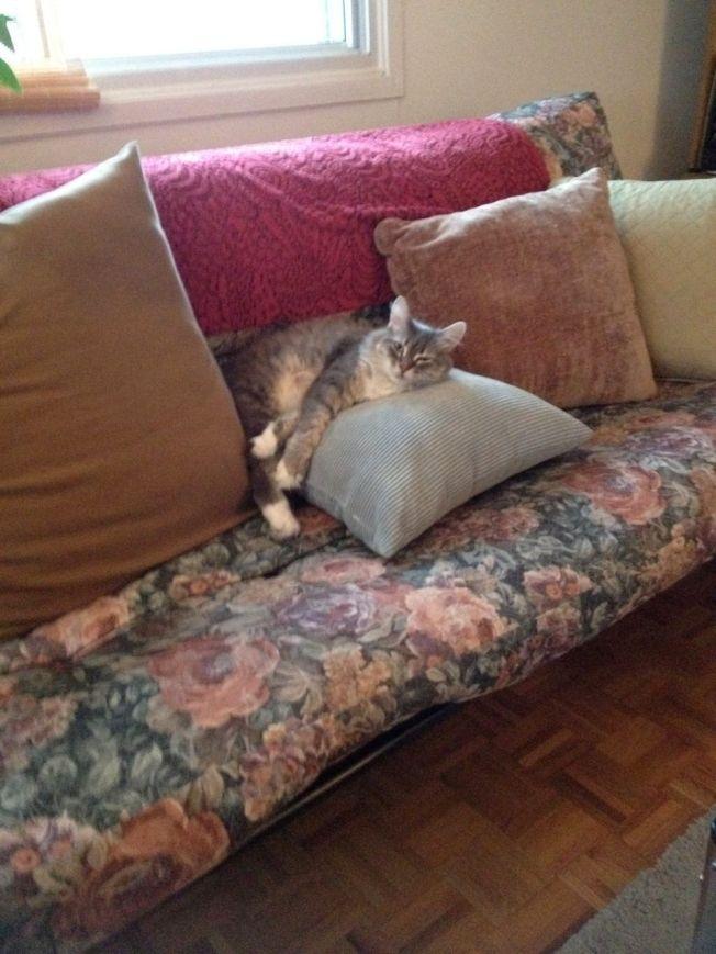 On sofa
